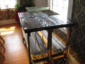 seedling starting table